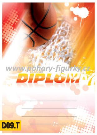 diplom D09.T basketbal