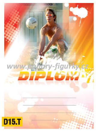 diplom D15.T beach voleyball