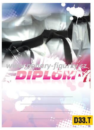 diplom D33.T bojové sporty