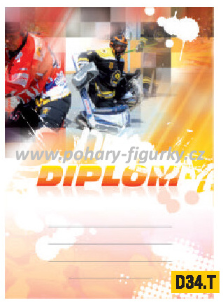diplom D34.T hokejbal